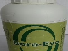 BORO-EVO